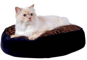 cat bed discount with promo code