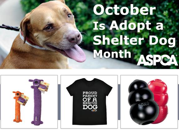 ASPCA promo code 10 percent off