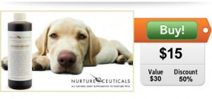 probiotic supplement for dogs on sale