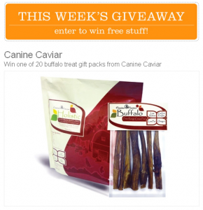 canine caviar giveaway from Modern Dog Magazine