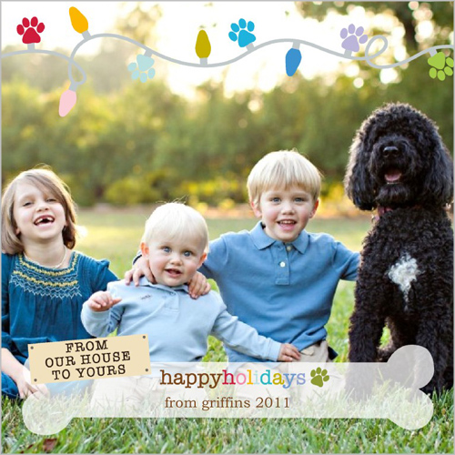 shutterfly paws holiday cards