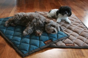 Dog bedroll giveaway