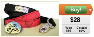 Gozo Dog leash and collar set on sale