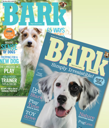 bark magazine on sale