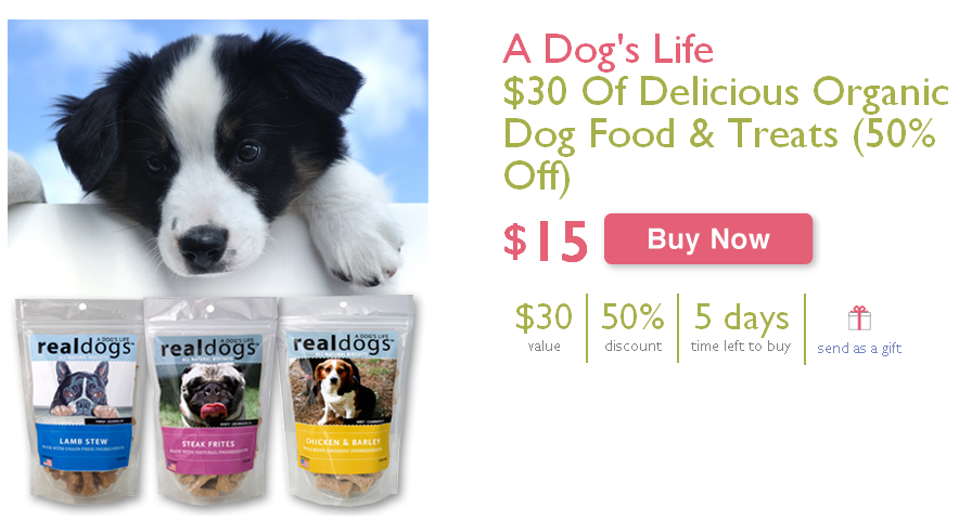 half off organic dog food and treats