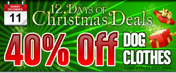 40% Off Dog Clothes plus Free Shipping in time for Christmas!