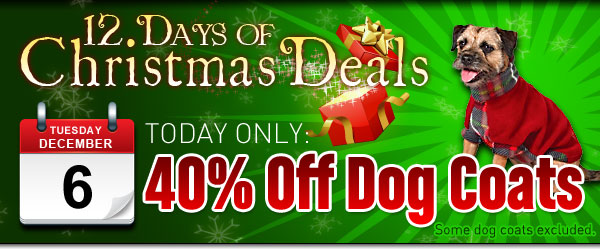 40% off coats for dogs at baxterboo