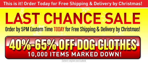 Last Chance sale for dog clothes