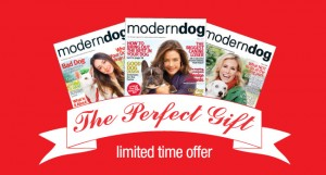 $10 Gift Subscriptions to Modern Dog Magazine
