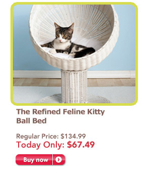 cat and dog beds on sale