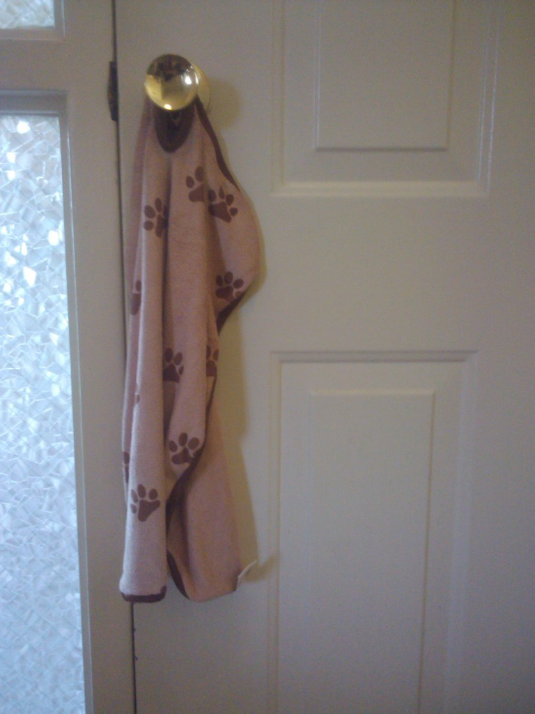 towel on doorknob doesn't drip