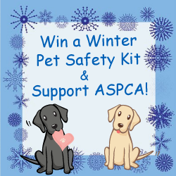 Support ASPCA and Win a Winter Pet Safety Kit Prize Pack!