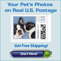 Your Pet Photos on Real US Postage Stamps!
