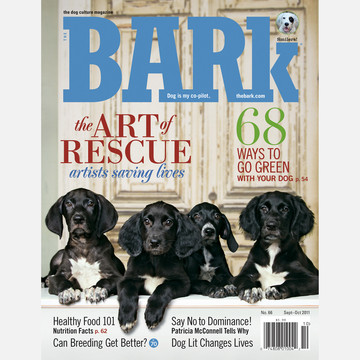 Save up to $10 on The Bark and Dog Fancy Magazine Subscriptions!