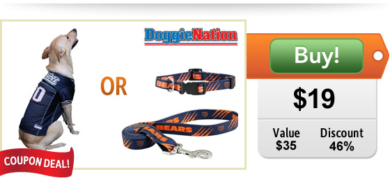 Licensed Pro Sports Team apparel and gear for dogs