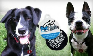 GPS Pet Tags on sale at Groupon