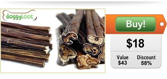 bully stick deal for dogs at DoggyLoot