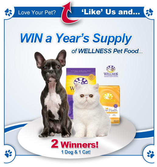 Win a year's supply of Wellness Pet Food from PetFoodDirect