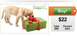 $22 Mystery box from DoggyLoot!