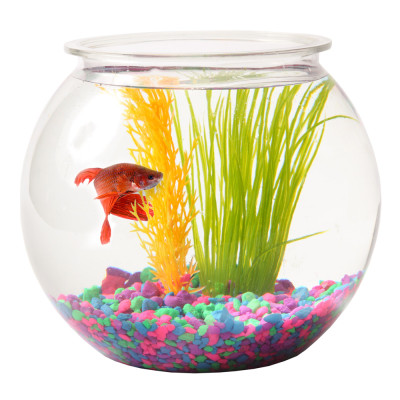 PetSmart Aquatics Sale