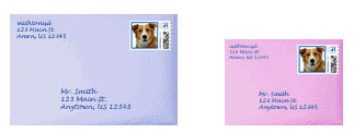 custom pet photo stamps on envelopes