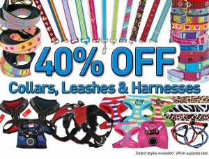 dog leashes, collars and harnesses on sale