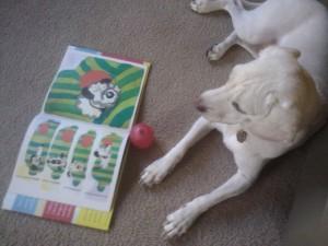 Daisy reading