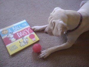 daisy and her new book from Grandma and Grandpa