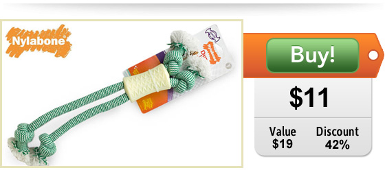 nylabone chew rope toy for dogs