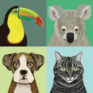 Animal Stationery and Prints