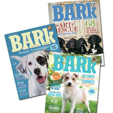 One year subscription to Bark Magazine