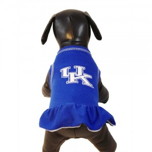 Kentucky Wildcats Cheerleader Dress for Dogs