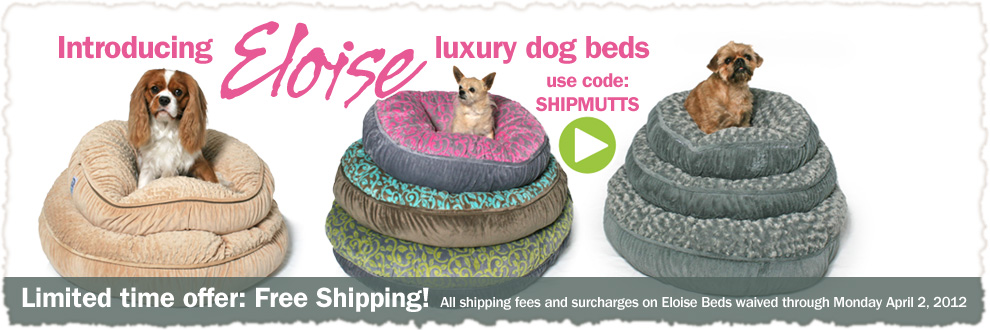 Free Shipping with Muttropolis Promo code