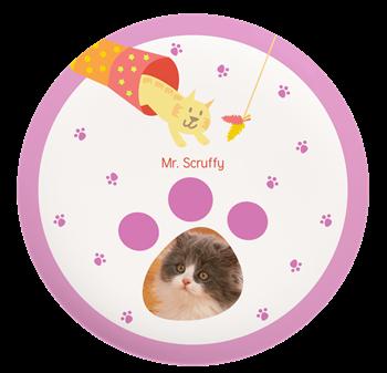 Cute Cat Plate