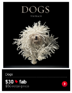 Dogs Coffee Table Book