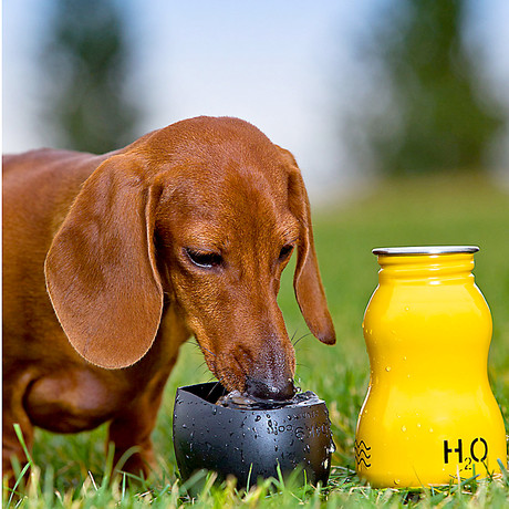 H2O4K9 travel water bottles for dogs