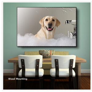 Turn your Pet Photo into Art