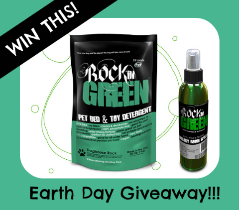 Rockin' Green Earth Day Prize Pack!