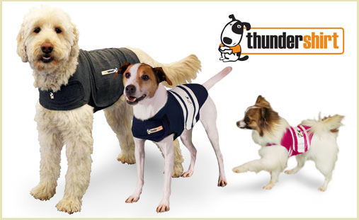 Thundershirt on sale at DoggyLoot