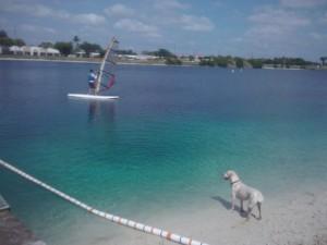 Windsurfer at Dog Beach