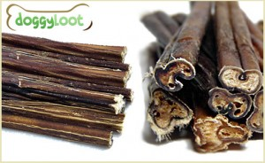 bully sticks deal at DoggyLoot