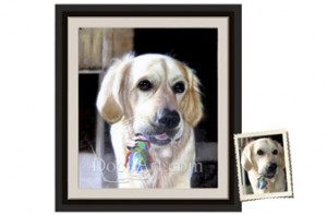 Pet Portrait deal from Coupaw