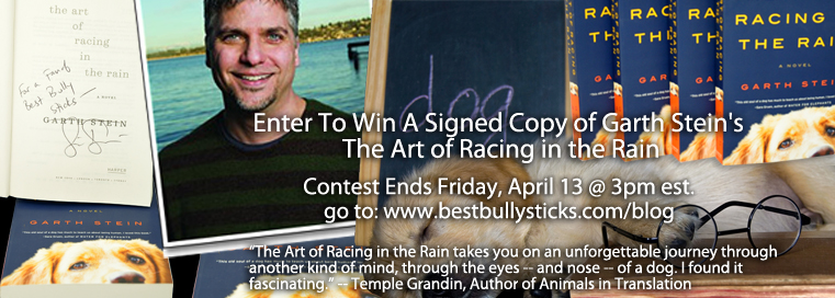 Book giveaway The Art of Racing in the Rain