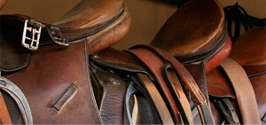 Free Guide to leather care for horse owners and riders