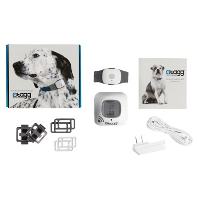 Tagg Pet Tracker on sale at Target