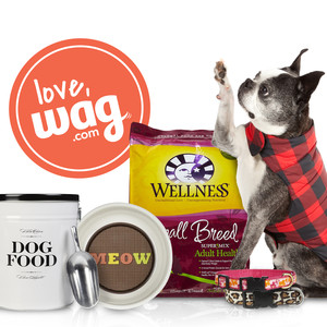 black friday pet deals at Wag.com