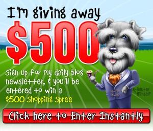 $500 BaxterBoo Giveaway!