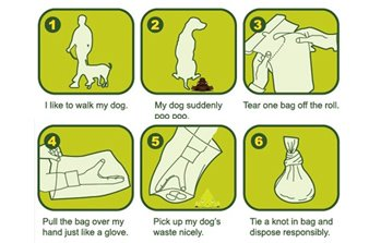 Coupaw Deal for Green N Pack Dog Poop Bags