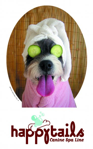 HappyTails Canine Spa