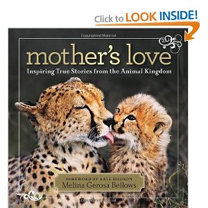 Mother's Love True Stories from the Animal Kingdom